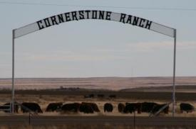 Image of Cornerstone Ranch inc.